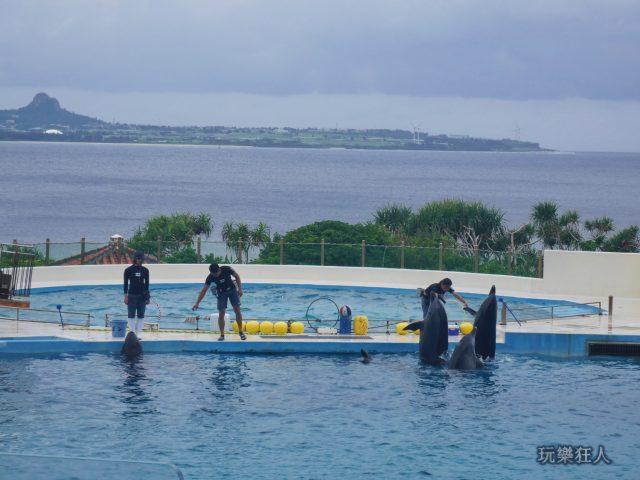 『海洋博公園』海豚劇場-暖身