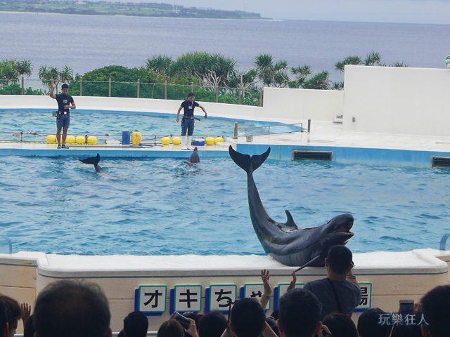 『海洋博公園』海豚劇場-道別