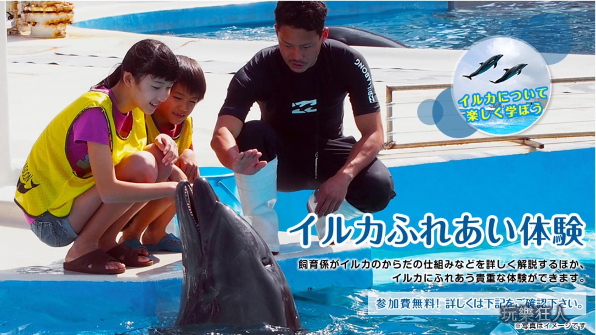『海洋博公園』免費「海豚接觸體驗」預約-官網截圖